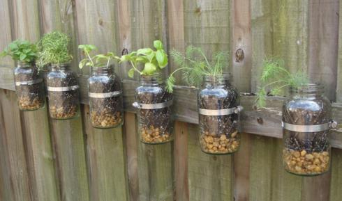 Mason jars garden